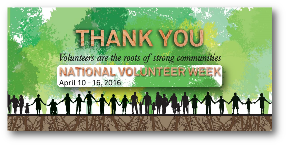 NVW2016_banner